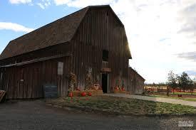 Pumpkin Patch North Bend Oregon by Oregon Archives Blanket Fort Adventures