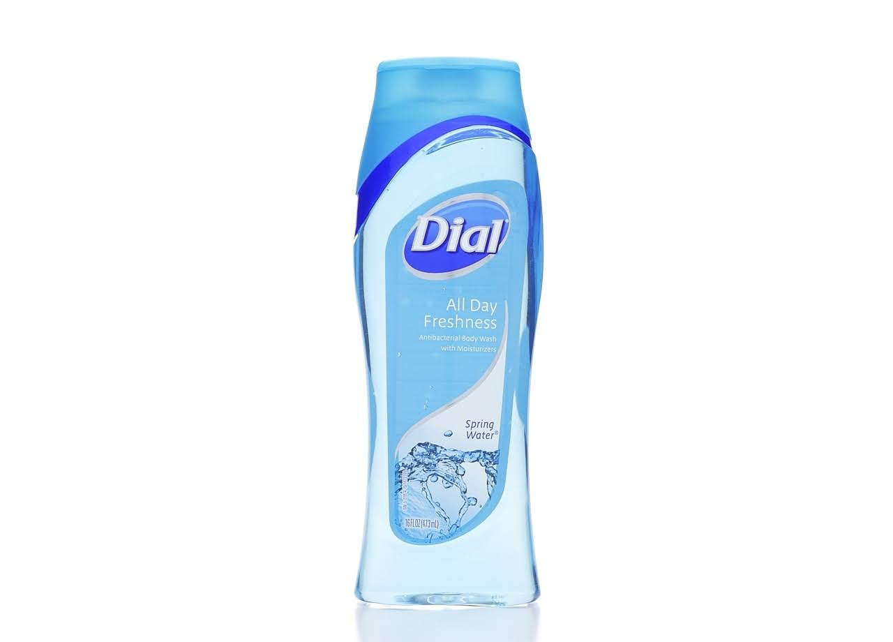 Dial All Day Freshness Antibacterial Body Wash - Spring Water