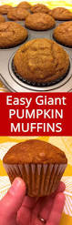 Pumpkin Spice Snickerdoodles Pinterest by Best 25 Easy Pumpkin Muffins Ideas On Pinterest 2 Ingredient
