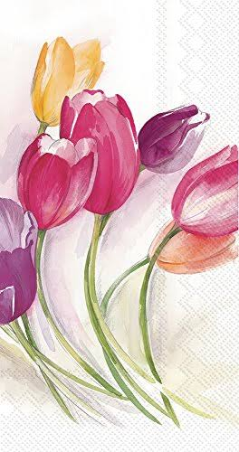 Boston International Celebrate The Home Floral 3-Ply Paper Guest/Buffet Napkins, Tulip Season, 20-Count