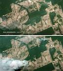 imagem de Nova Bandeirantes Mato Grosso n-22