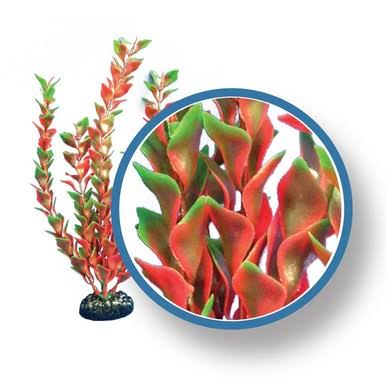 Weco Freshwater Pro Series Ludwigia Ornament - Red, 24""