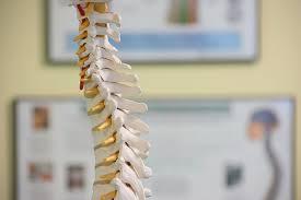 Cork chiropractor