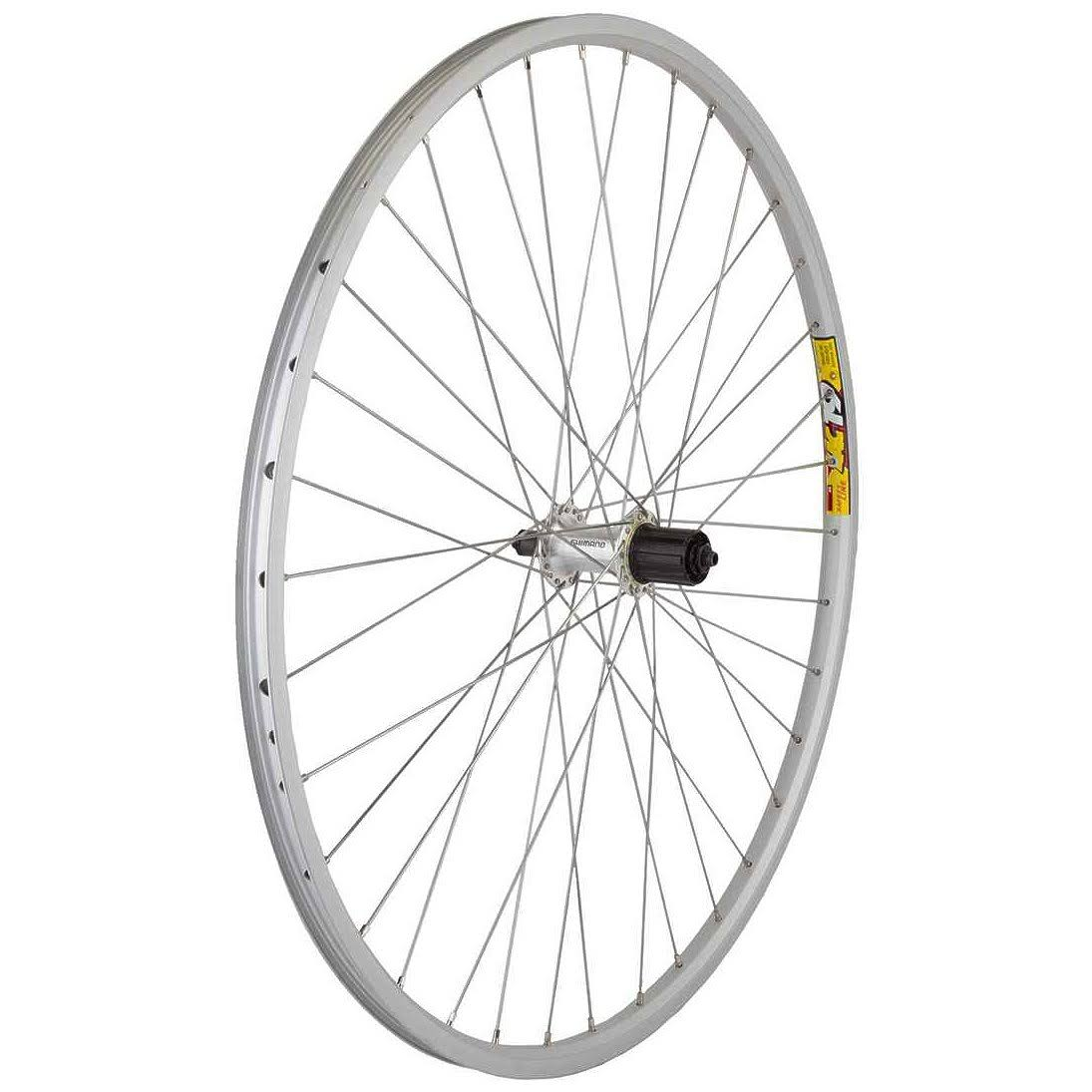Wheel Master 700c Rear Wheel - 36H, 8 Speed Cassette Hub, Silver/Silver/Steel