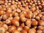 Afbeeldingsresultaat voor hazelnuts