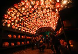 Pumpkin Fest Highwood by 5 Jack O U0027 Lantern Festivals You Need To See To Believe