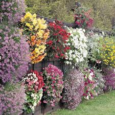Flowers For Flower Beds by 15 Fence Planters That U0027ll Have You Loving Your Privacy Fence Again