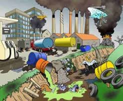 ساهموا في تنظيف بيئتنا !!!!!!!!!!!!!!!!!!! images?q=tbn:ANd9GcQ