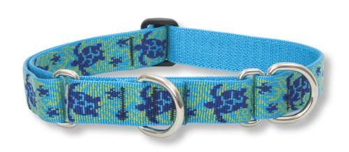 "LupinePet Basics Martingale Dog Collar - 1""x15-22"", Turtle Reef"