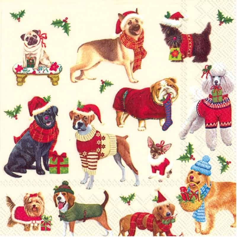 Ideal Home Range Cocktail Paper Napkins - Christmas Dogs, 20 Count