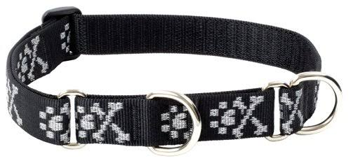 "Lupine Martingale Combo Collar - Bling Bonz, 1"" X 15"" to 22"""