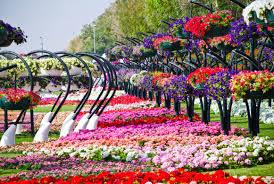 اجمل حدائق العالم images?q=tbn:ANd9GcQ