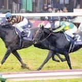 有馬記念, キタサンブラック, 天皇賞, 競馬の競走格付け, 武豊, 勝馬投票券