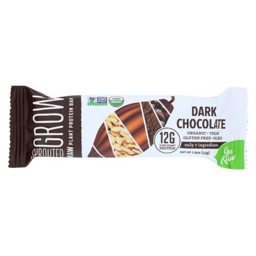 Go Raw Organic Sprouted Plant Protein Bars - Dark Chocolate, 1.9oz