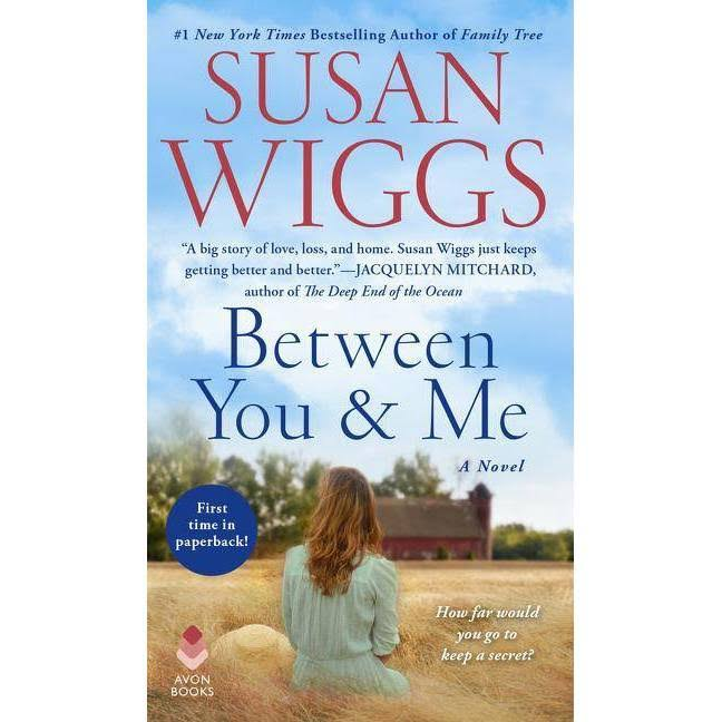 Between You and Me: A Novel - Susan Wiggs