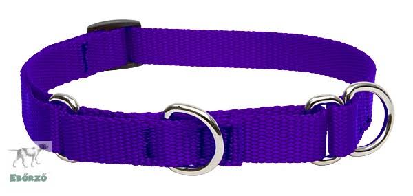 "Lupinepet Martingale Combo Collar - Purple, 14""-20"""