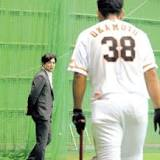 高橋由伸, 読売ジャイアンツ, 岡本和真, みやざきフェニックス・リーグ, 日本