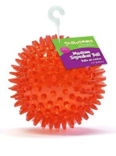Gnawsome Dental Ball Pet Toy with Squeaker