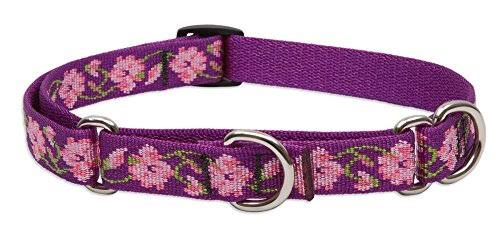 "Lupinepet Originals Martingale Collar for Medium and Larger Dogs - Rose Garden, 3/4"" x 14-20"""