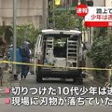 読売新聞, 日本