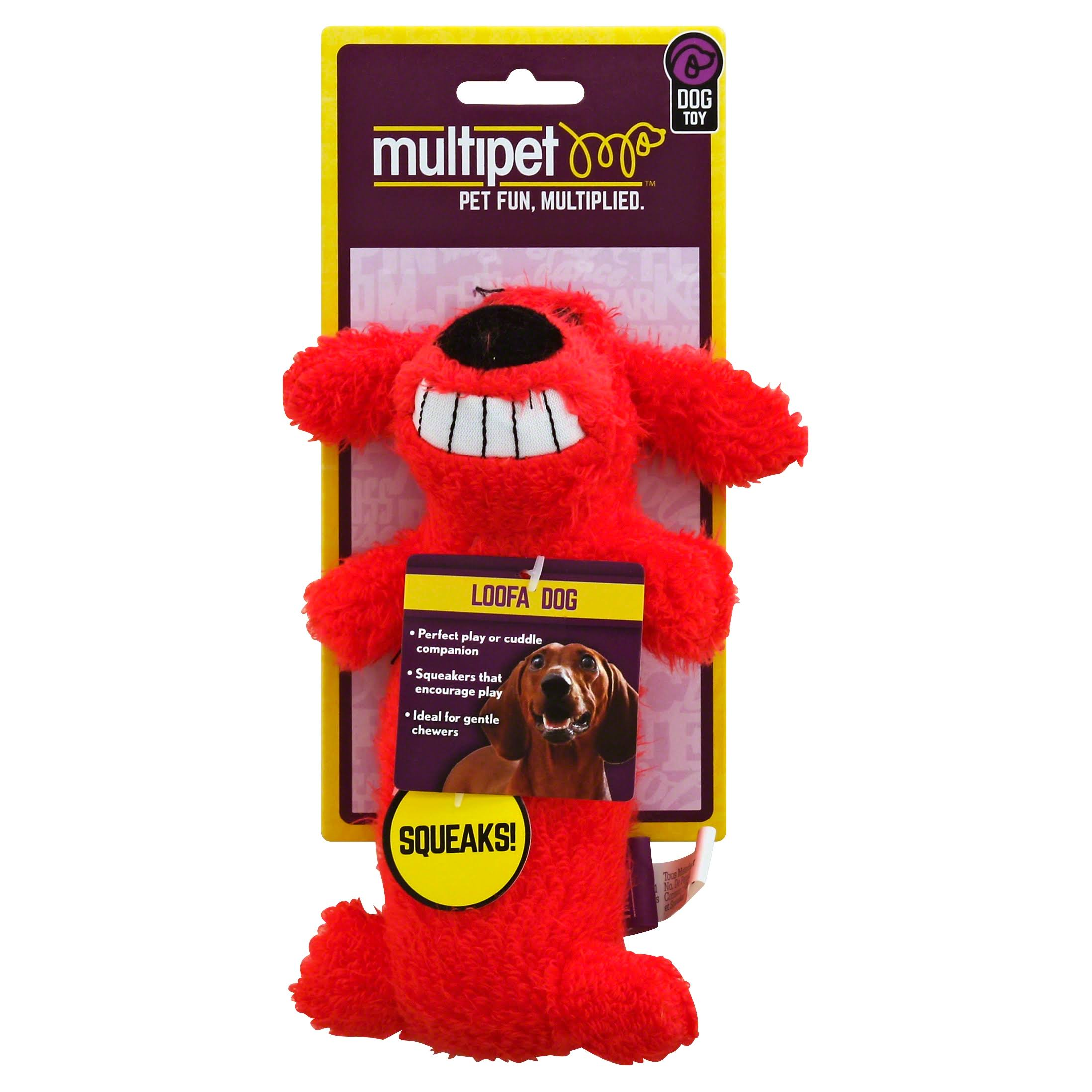 Loofa Plush Dog Toy with Squeaker