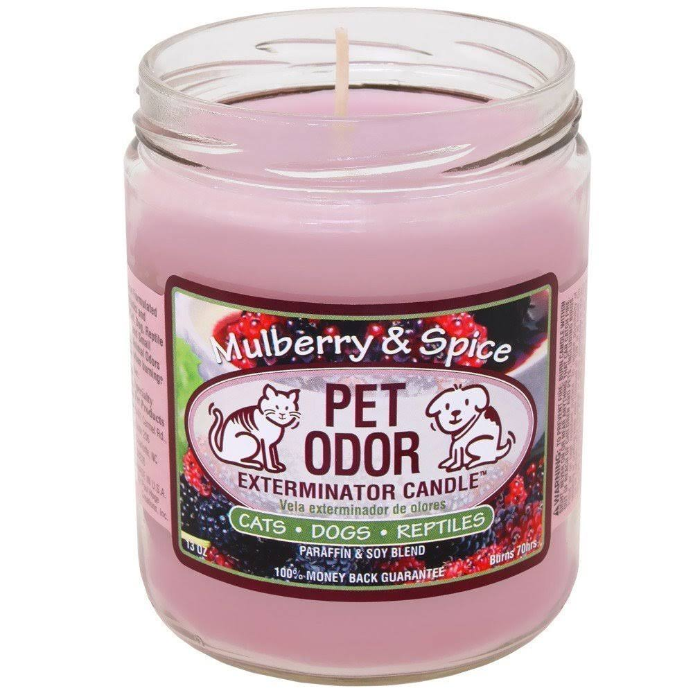 Pet Odor Exterminator Candle - Mulberry and Spice, 13oz