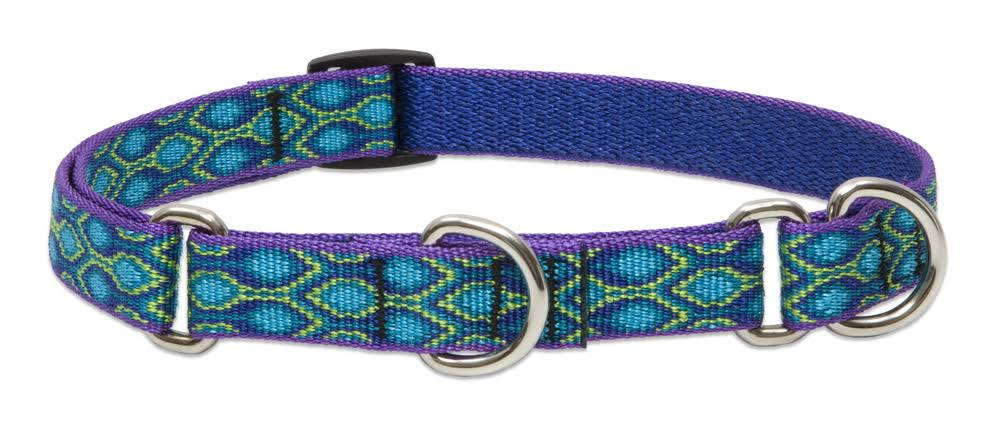 "Lupine Lifetime Combination Martingale Dog Collar - 3/4"", Size 2, rain Song"