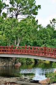 Pumpkin Patch Bonita Springs Fl by 71 Best Delray Beach Morikami Museum U0026 Japanese Gardens Images