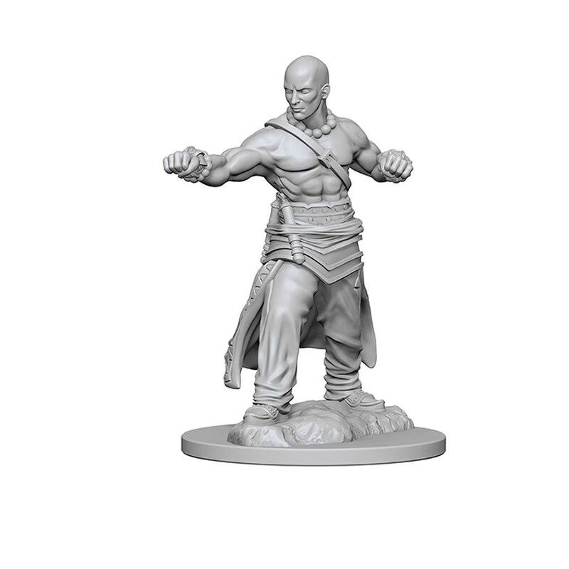 Pathfinder Deep Cuts Unpainted Miniatures Human Male Monk