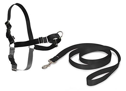 PetSafe Easy Walk Dog Harness - Black, Small to Medium , 1.8m