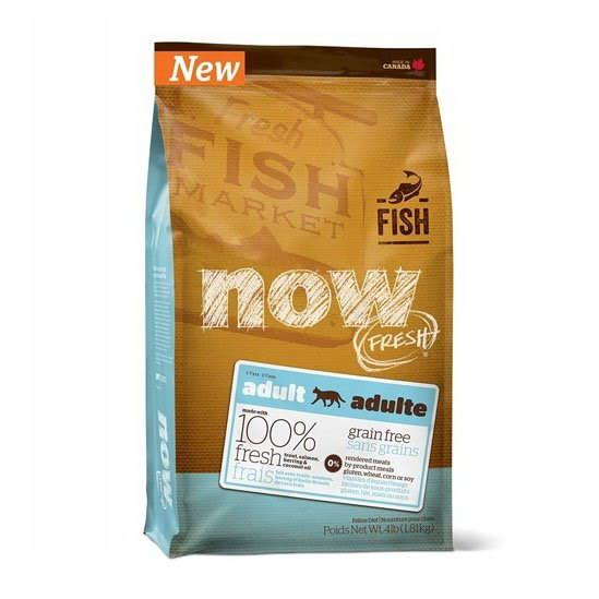 Now! Fresh Grain Free Fish Recipe Adult Dry Cat Food, 8 lb