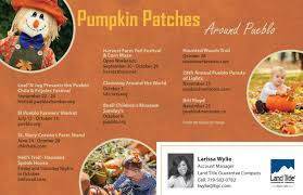 Pumpkin Patch Pueblo County by Land Title Marketing Solutions Referral Marketing Postcards