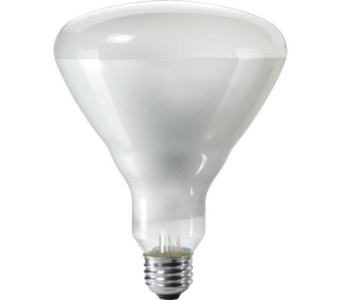 Philips Duramax Br40 Indoor Flood Light Bulb - 65W