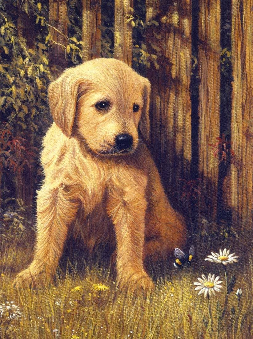 "Royal & Langnickel Pre-Printed Paint by Number Painting Kit - Puppy Blues, 11""x15"""