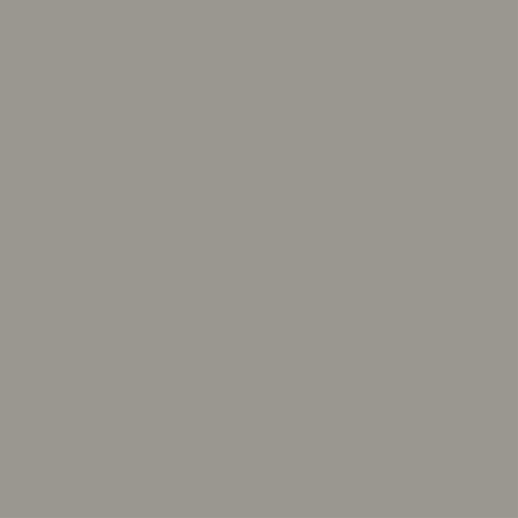 Farrow & Ball Worsted No.284 - Tester Paint - 100ml