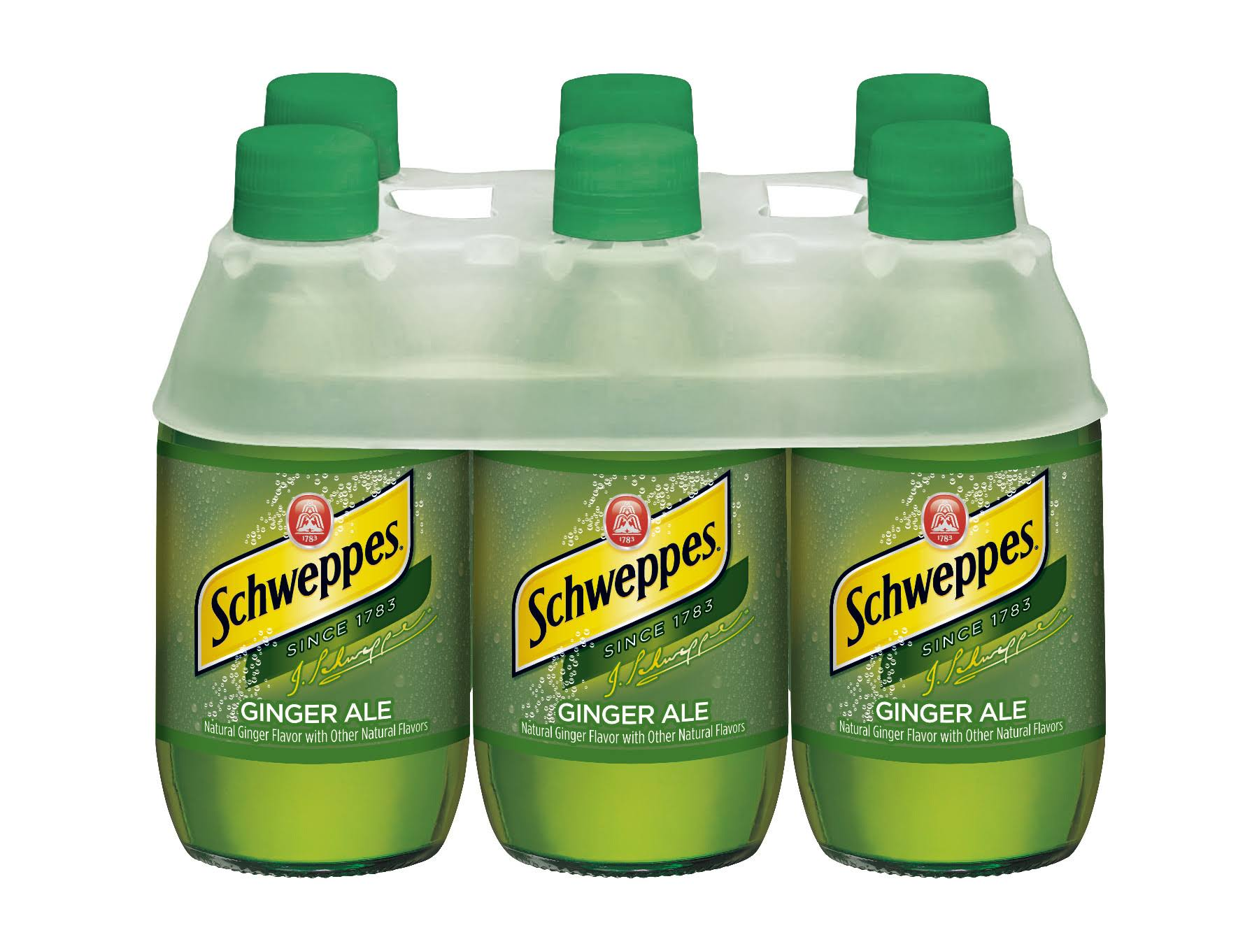 Schweppes Ginger Ale - x6