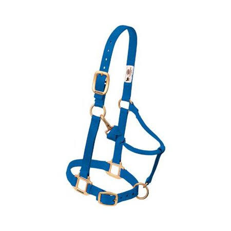 Weaver Leather Original Adjustable Chin and Throat Horse Halter - Average, Blue