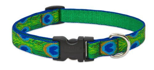 "Lupine Pet Originals Adjustable Dog Collar - 3/4"", for Large Dogs, Tail Feathers"