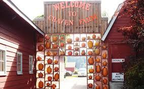 Pumpkin Patch Petting Zoo Dfw by America U0027s Best Pumpkin Farms Travel Leisure