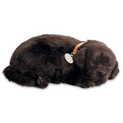 Petzzz Black Lab Breathing Puppy in Dog Bed