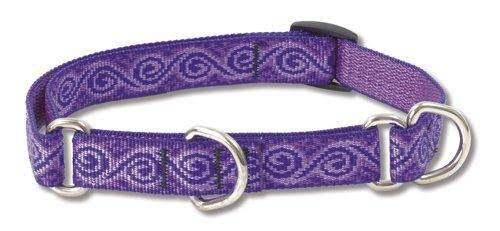 "Lupine Jelly Roll Martingale Combo Collar for Medium to Large Dogs - 3/4"" x 14-20"""