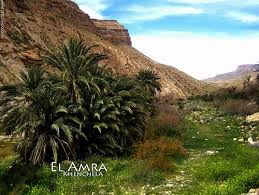 خنشلة بلاد الشاوية (1).............. images?q=tbn:ANd9GcR