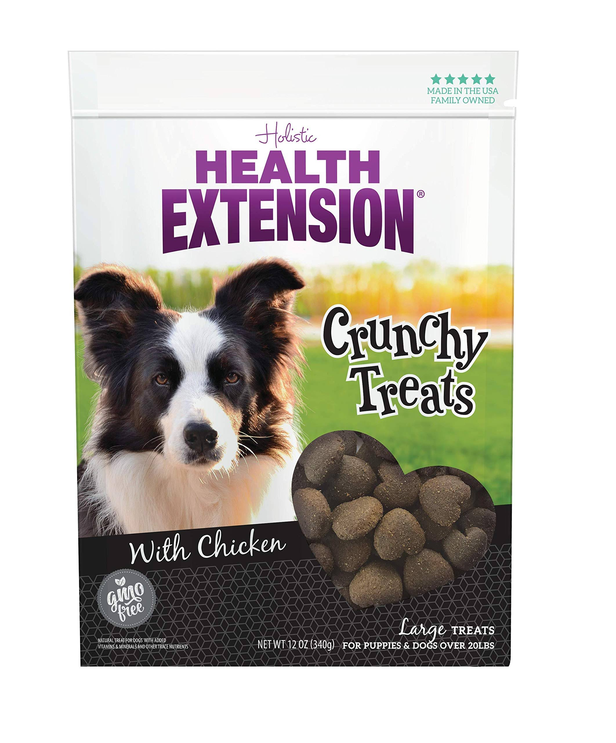 Health Extension Dog Supplies Treats - Heart Shaped, 1lb, Large