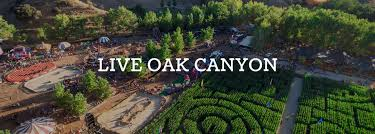 Free Pumpkin Patches In Colorado Springs by The Pumpkin Factory Live Oak Canyon Pumpkin Patch Home