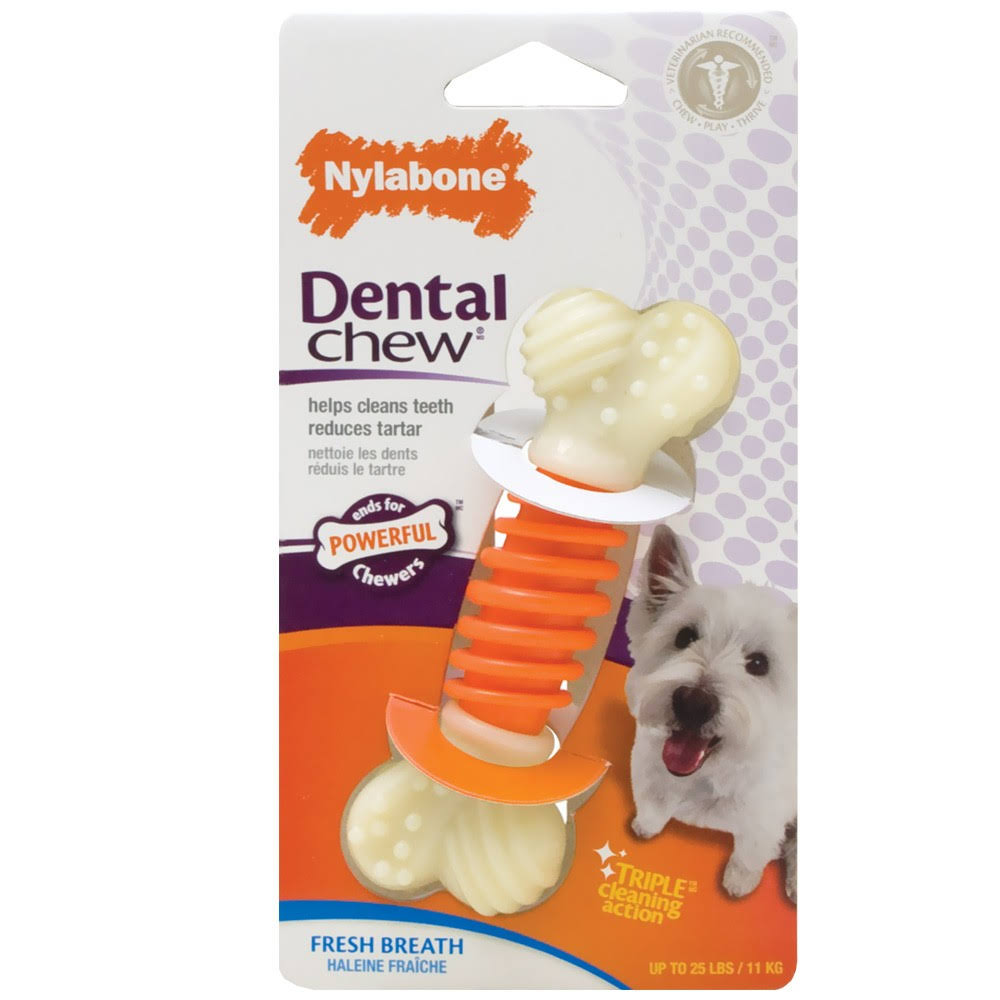 Nylabone Dental Chew - Bacon