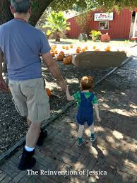 Free Pumpkin Patch Houston Tx by 7 Acre Wood Pumpkin Patch The Reinvention Of Jessica