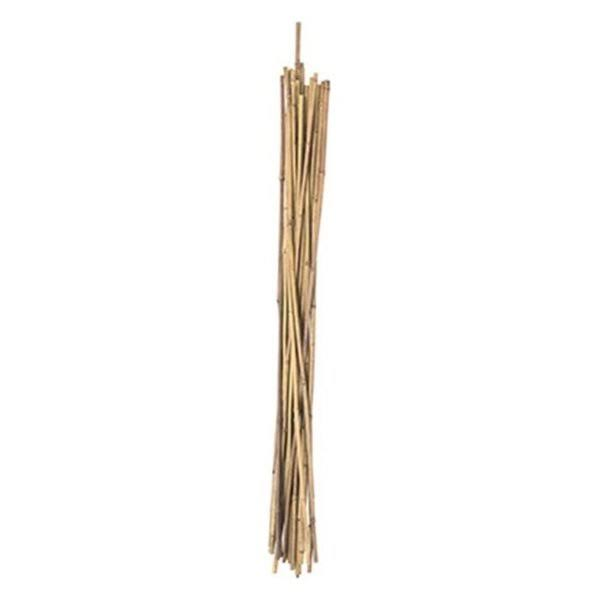 Panacea Natural Bamboo Stake - 24 Pack, 3'
