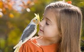 صور حيوانات images?q=tbn:ANd9GcR