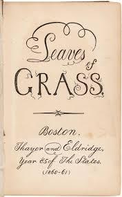 The Wound Dresser Walt Whitman Wiki by Rocky Waterfowl Waterproof Bib Hw00142 All About Grass