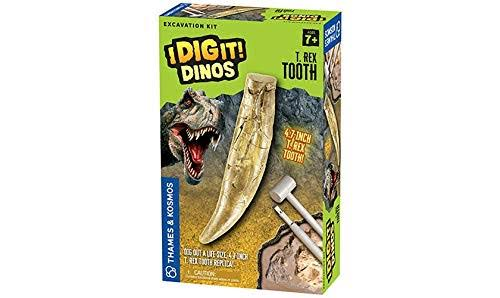 Thames & Kosmos - I Dig It! Dinos - T. Rex Tooth Excavation Kit